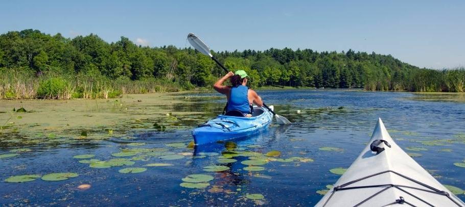 Kayakers in SC